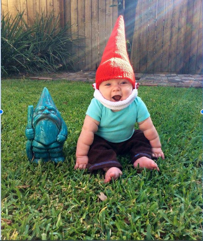 Desmond travel gnome